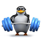 3d Penguin weightlifter Royalty Free Stock Image