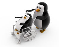 3d penguin on wheel chair concept Stock Photo