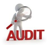 3d petites personnes - audit de lupe Image stock