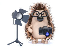 3d Photographer hedgehog Royalty Free Stock Photography