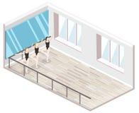 3D piano isometrico ha isolato il ballo-corridoio interiortraining tagliato di concetto Fotografia Stock Libera da Diritti