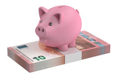 3D Piggy bank and 10 euro pack Stock Image