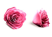 3d pink rose Stock Photography