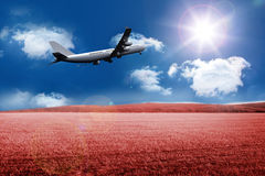 3D plane taking off over field. Kind of amazing 3D plane taking off over field Royalty Free Stock Photo