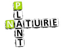 3D Plant  Nature Crossword text. Over white background Stock Photos