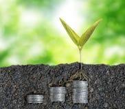 3 d pojęcia pojedynczy utylizacji inwestycji Zdjęcie Royalty Free
