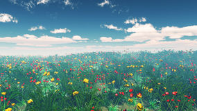 3D poppy field landscape Royalty Free Stock Images