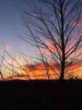 3 d pustyni ilustracji słońca Fotografia Stock