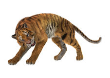 3D que rende Cat Tiger grande no branco Imagens de Stock Royalty Free