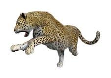 3D que rinde a Cat Leopard grande en blanco Fotografía de archivo libre de regalías