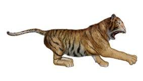 3D que rinde a Cat Tiger grande en blanco Fotos de archivo libres de regalías