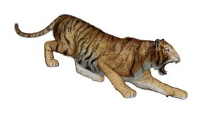 3D que rinde a Cat Tiger grande en blanco Foto de archivo libre de regalías