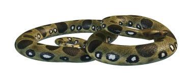 3D que rinde la anaconda verde en blanco Imagen de archivo libre de regalías