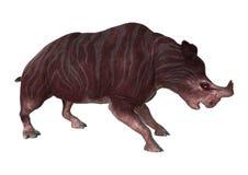 3D que torna Kiroi animal no branco Imagens de Stock Royalty Free