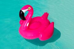 3d różowią flaminga, tropikalnego ptasiego kształta basenu nadmuchiwany pierścionek, tubka, pławik Wakacje wakacyjny gumowy przed obraz stock