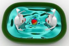 3d rabbit bathing in small home pool concept Royalty Free Stock Image