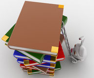3d rabbit climbing on books with ladder concept Royalty Free Stock Images
