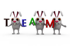 3d rabbit with colorful TEAM font concept Stock Images