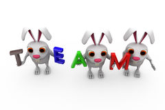 3d rabbit with colorful TEAM font concept Royalty Free Stock Photos