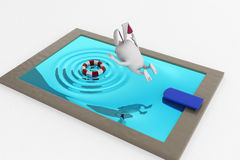 3d rabbit jump in pool concept Stock Images