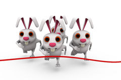3d rabbit race concept Royalty Free Stock Photos