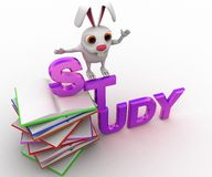 3d rabbit on study text and pile of books concept Royalty Free Stock Images
