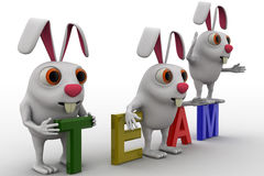 3d rabbits on colourful team text concept Stock Images