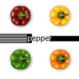 3d realistic bell pepper set top view. Red, yellow, green, orang. E. Vector illustration Stock Photography