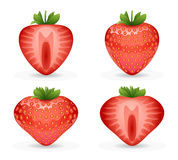 3d realistic fruit design strawberry vector illustraton Royalty Free Stock Image