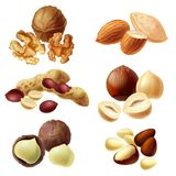 3d realistic set of various nuts royalty free stock photos