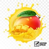 3d realistic transparent isolated vector, whole and pieces mango fruit with leaf in a splash of juice with drops royalty free illustration