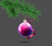 3D realistic vector christmas ball with fir branch. Vector realistic purple christmas ball with fir branch and decorative ribbon  on transparent background Royalty Free Stock Photos