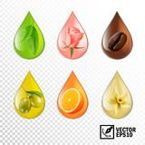 3d realistic vector transparent drops oil with taste and aroma: tea, rose, coffee, olive, orange, vanilla. Editable handmade mesh.  royalty free illustration
