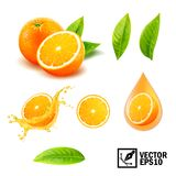 3d realistische vectorreeks van elementen gehele oranje, gesneden sinaasappel, plonsjus d'orange, laat vallen oranje olie, blader royalty-vrije illustratie