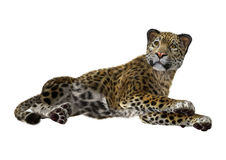 3D rendant grande Cat Jaguar Photos libres de droits