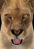 3D rendant le lion femelle Image libre de droits