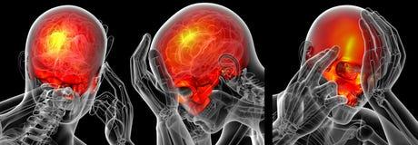 3d rendant médical du crâne supérieur Illustration de Vecteur