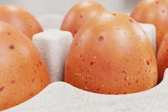 3d rendem da caixa de ovo Imagens de Stock