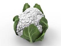3D rendem de uma couve-flor ilustração do vetor