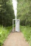 3d rendem do campo de grama bonito com visão branca aberta da porta, porta, Fotografia de Stock