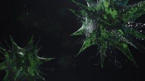3D rendem o vírus que das bactérias se mover rende video estoque