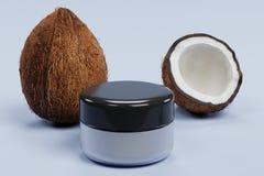 3D rendent de la noix de coco avec la crème Image stock