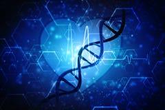 3d rendent de la structure d'ADN à l'arrière-plan médical de technologie Photos libres de droits