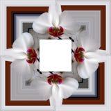 3D rendent le cadre de fond de fleur Photo libre de droits