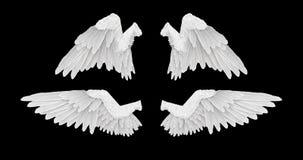 3D rendent les ailes blanches d'ange avec dessus un fond noir illustration libre de droits