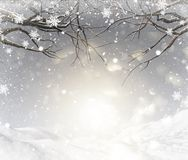 3D Christmas background with snowy tree branches Royalty Free Stock Photos
