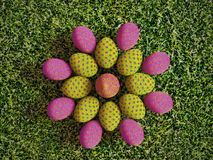 Easter eggs on grass. 3D render of colorful easter eggs arranged into flower pattern placed on grass shot from above Stock Photo