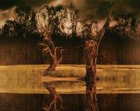 Desolated nature scene Stock Photos