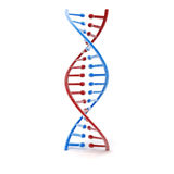 3d render of dna structure Royalty Free Stock Images