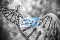 3d render of dna structure. Abstract  background Royalty Free Stock Photos